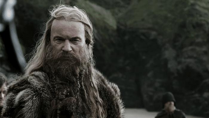 Por Que As Barbas De Viking São Legais Beard